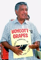 chavez-and-the-grapes