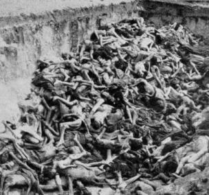 Mr. Grayson, THIS is the human atrocity that was The Holocaust.